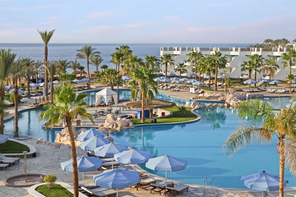 فندق هيلتون شلالات شرم ريزورت شرم الشيخ 5 نجوم