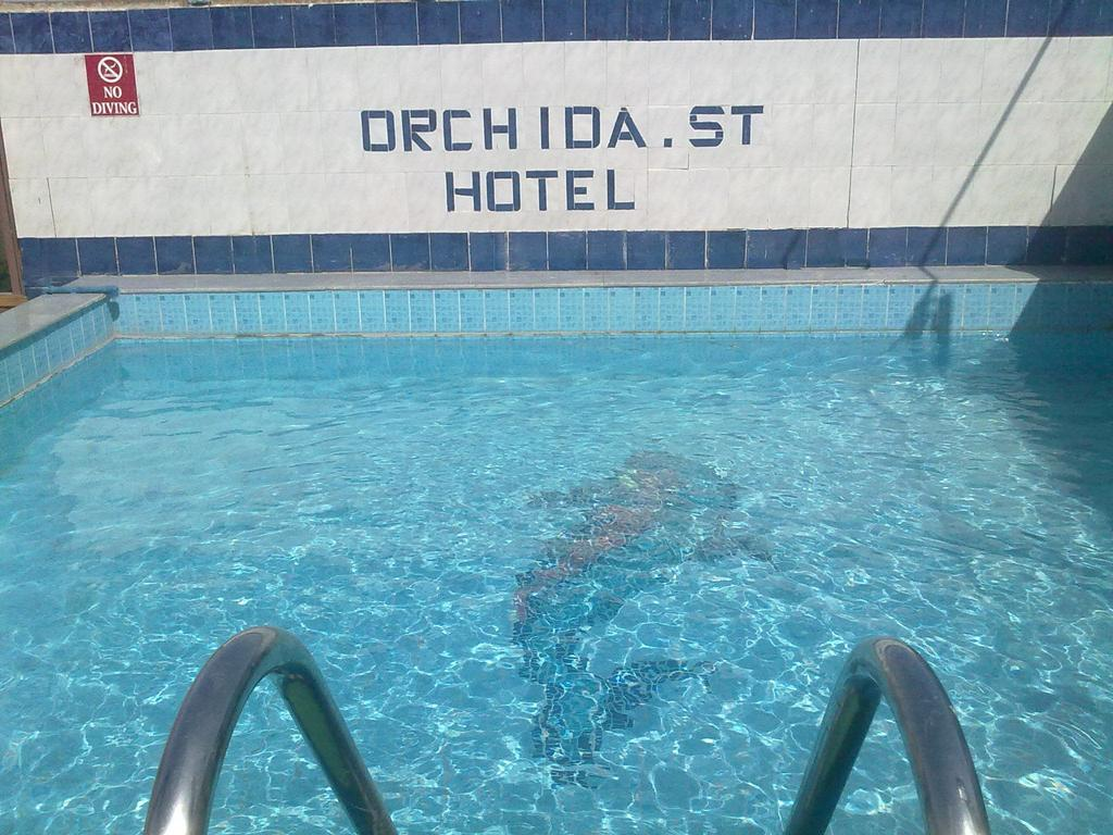فندق اوركيدا سان جورج اسوان 3 نجوم